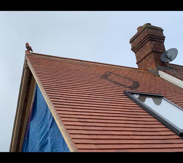 Clay Roof Tiling